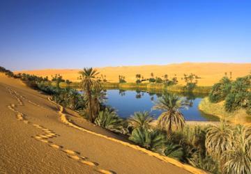Deserto: quando nossas raízes bebem da Água Viva
