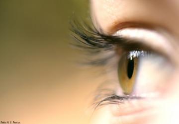 ADVENTO: olhos e ouvidos expansivos