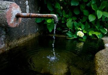Bendita sede